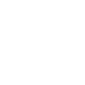 Zoom Pizza Logo
